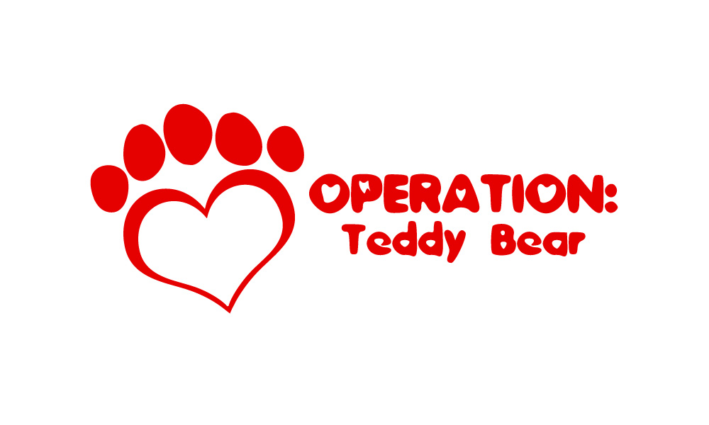 Operation Teddy Bear